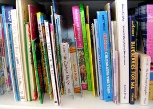 bookshelf image of children's books