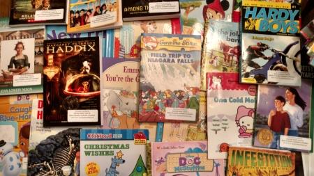 Richardson Park School Books, Success Won't Wait